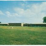 81 elementary